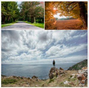 el camino frances de santiago en galicia
