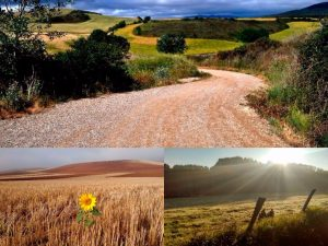 etapas y ruta de la via de la plata