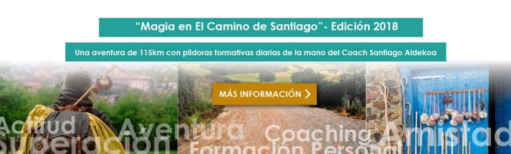 Camino de santiago organizado con santiago aldekoa
