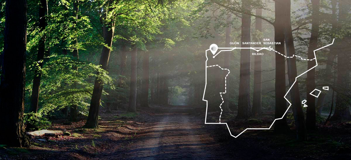 Camino Del Norte Todas Las Etapas La Guía Del 2020